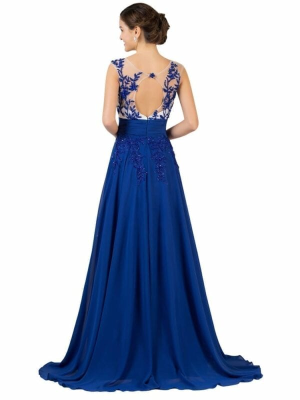 Backless Transparent Embroidery Long Evening Dress