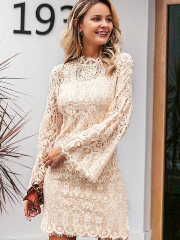 Elegant Flare Sleeve Lace Embroidery Ruffled Office Dress